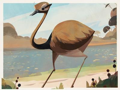 Birds — Greater Rhea