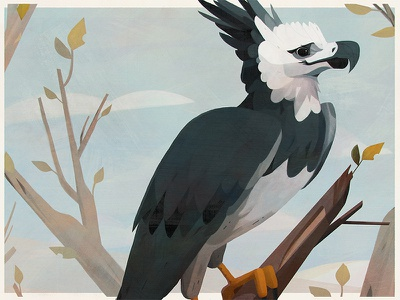 Birds — Harpy Eagle vintage poster painting illustration drawing brazil birds bird