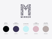 Color palette for Mirror clothing company