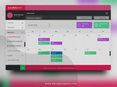 Calendario de Inspecciones dashboard web uxperu ui ux app