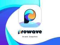 ProWave Brand Snapshot