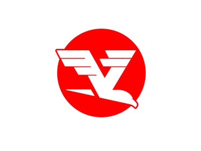 VoomTek Logo sun fast motion hawk eagle bird brand voom logo