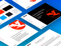 VoomTek Brand Guidelines