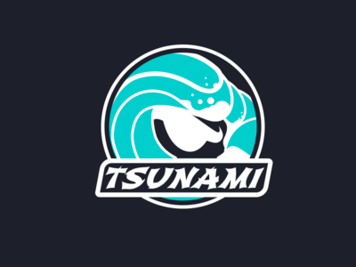 Tsunami Travel Ball Circle Logo sports brand logo sports softball wave tsunami