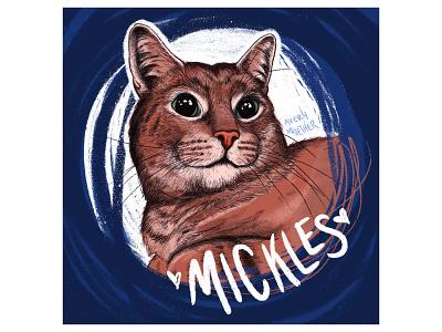 Mick the cat. cute sketch portrait procreate ipad cat art cat