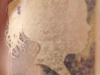 Golden Silhouette (cut decal)