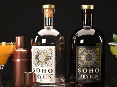 Dry Gin Package Design 3d design package design