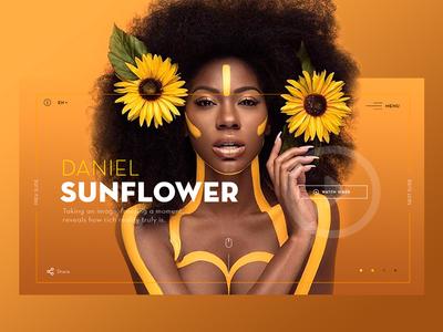 Sunflower Dribble ui design web design