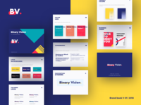 Binary Vision new Brand System Guide