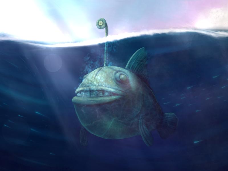 Weird Fish By Alejandro Figueroa Dribbble Dribbble