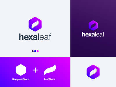 HexaLeaf Logo prio hans purple color leaf logo leaf hexagonal shape hexagonal logo hexagonal colorful design brand vector branding color logo