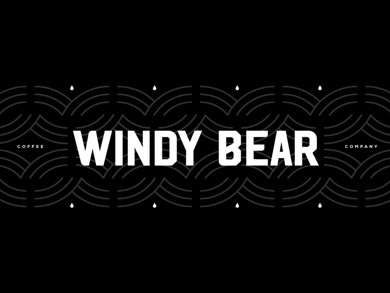 Windy Bear animal pattern type identity typography qualtrics branding bear chicago coffee