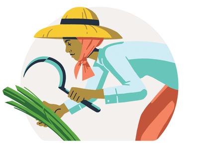 Ancestor Card, Chantrea character adobe photoshop 2d rice cambodia board game design illustration