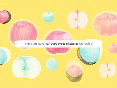 Apples vintage collage design color graphic colors illustration