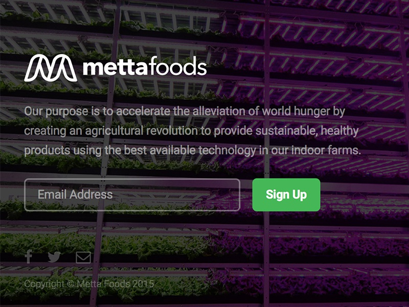Agriculture/Foods Startup — Landing Page farm farms metta food clean simple logo brand front-end design ux ui