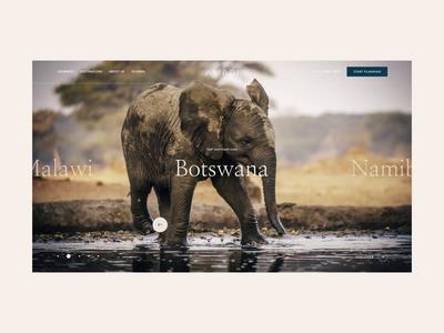 Amadi Website Slider Animation