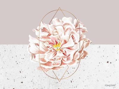 Peony floral frame design blossom