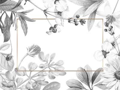 Blank floral frame design gold frame blackandwhite design illustration blooming