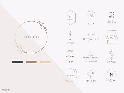 Organic logo collection plant design vector illustration