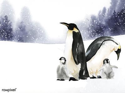 Animals Winter set
