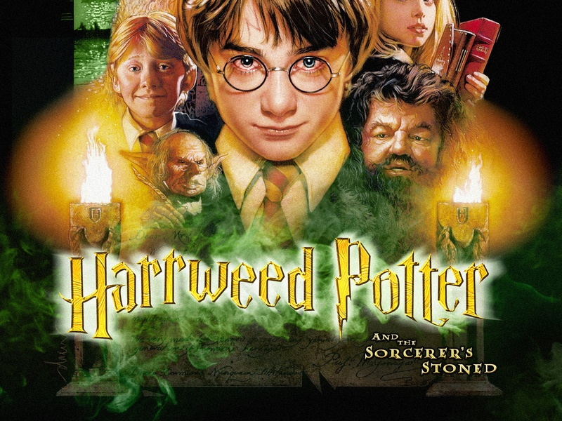Discover your inner Hufflepuff harry potter parody design movie mashup