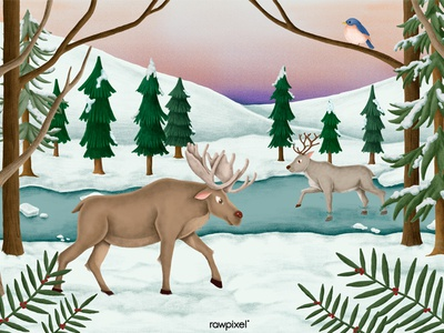 Moose and reindeer in a snow-covered forest