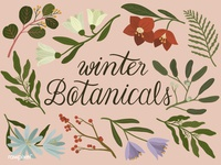 Winter Botanicals