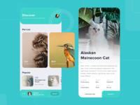 Keone - Pet Finder App