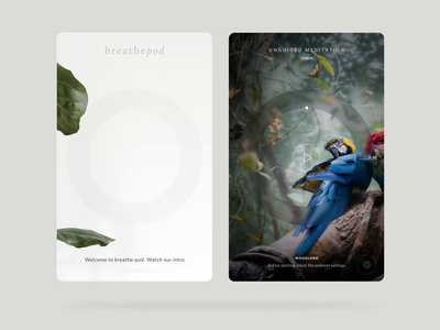 BreathePod - iOS and Tablet android ios tablet meditation app mindfulness breathing breathepod meditation ui