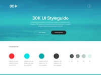 30k Initial Style Guide