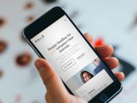 Halo Brand & UI