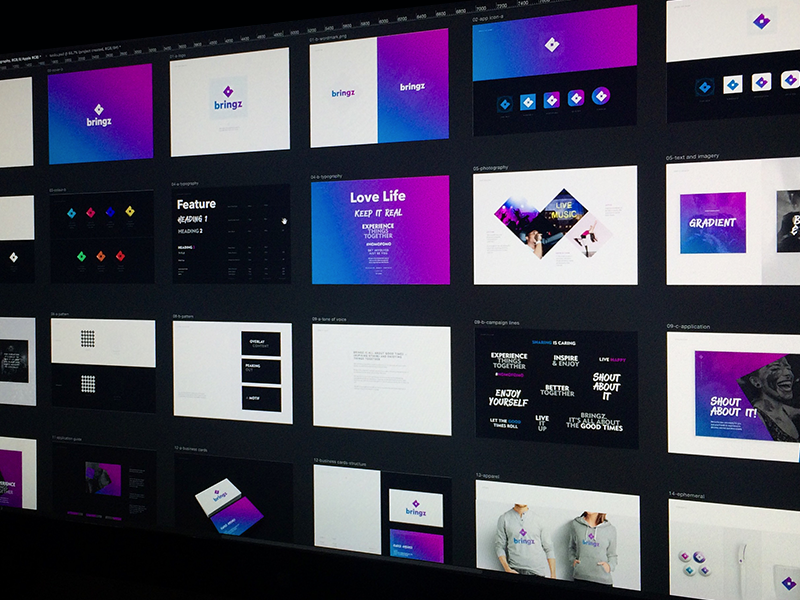 Bringz Brand Guide color colour brand guide styleguide typography logo colours identity brand