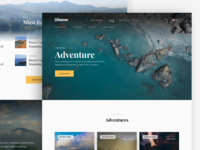 The Dreamer Hostels Adventure Page landscape grid adventure hostel dreamer web landing illustration design eleken ux ui