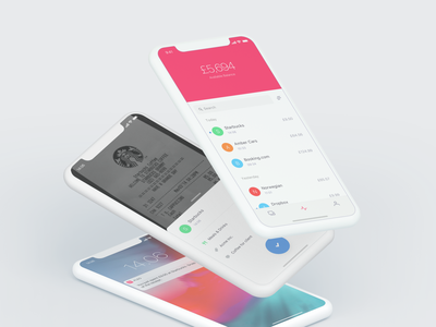Pleo 1.8 pipes hotdogs gooseberrys fintech pleo interface app