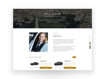 Best In Chauffeur - Chauffeur Profile Page