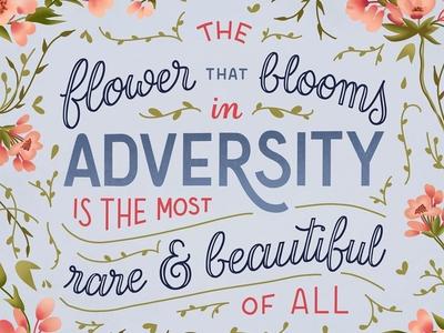Flower Blooming in Adversity
