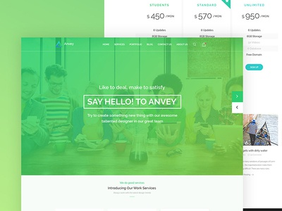 Anvey PSD Template