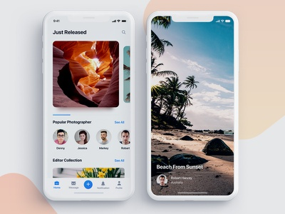Freebie Photo Sharing Mobile App sea beach ocean tree freebie free download unlimited photographer social iphonex typography logo flat interaction modern minimal clean web website webdesign interface experience ui ux user field button photo image camera picture mobile iphone ios material app application screen page
