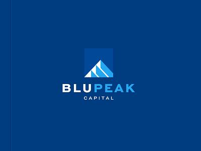 Blupeak Capital blue illustration character branding icon vector symbol design logo business accounting mountain capital finance peak