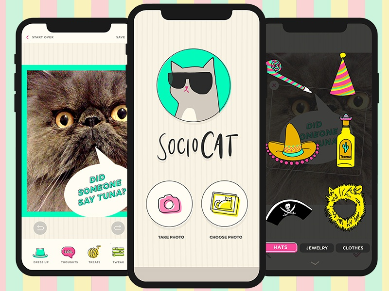 Sociocat App Design photography ios uxui creative director art direction sociocat flat mockup illustration design app