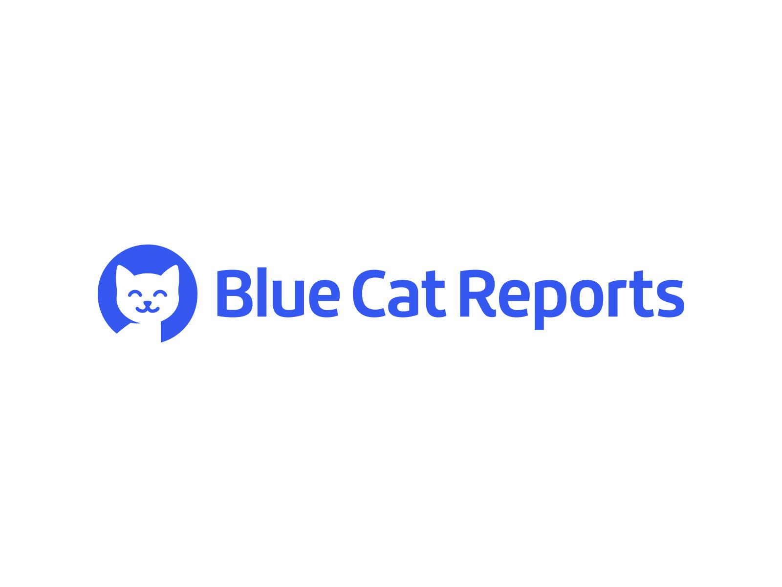 Blue Cat Reports – Logo Design