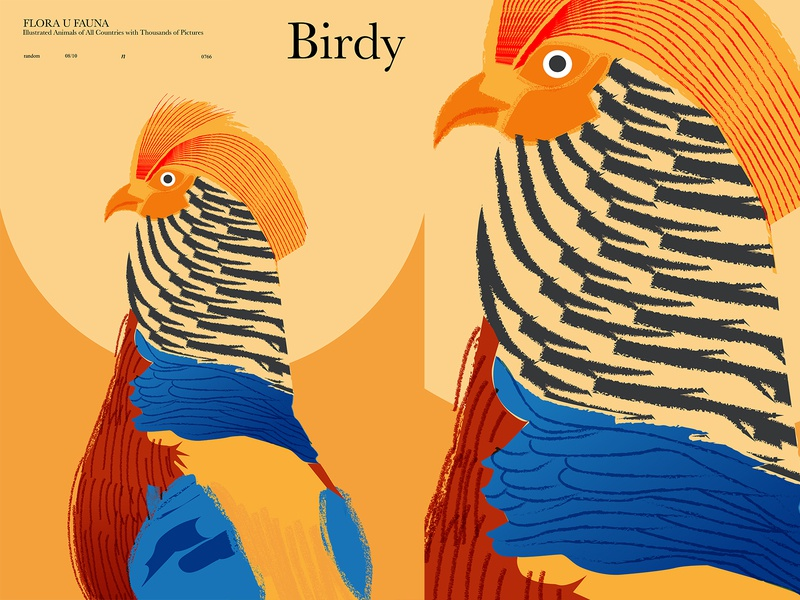 Birdy prints texture vector illustration vector animal illustration bird illustration bird print lines poster laconic illustration composition abstract minimal