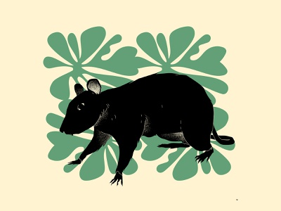 Mouse animal illustration texture grunge texture grunge floral pattern floral leaves mouse illustration mouse design lines poster laconic illustration composition abstract minimal