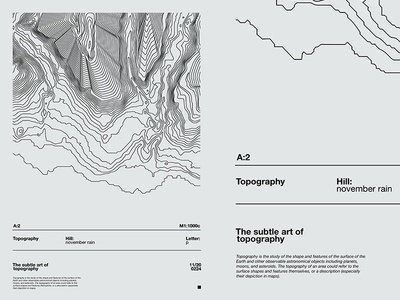 Fragment 133 topographic map topographical topography swiss design modern lines composition abstract minimal