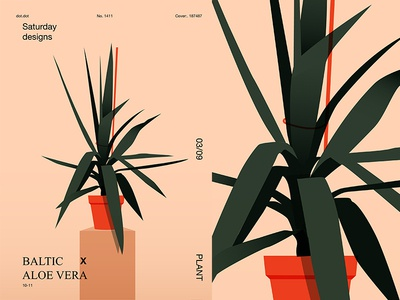 Aloe Vera floral flower aloe vera aloe fragment layout poster art poster challenge poster a day form lines poster illustration laconic composition abstract minimal