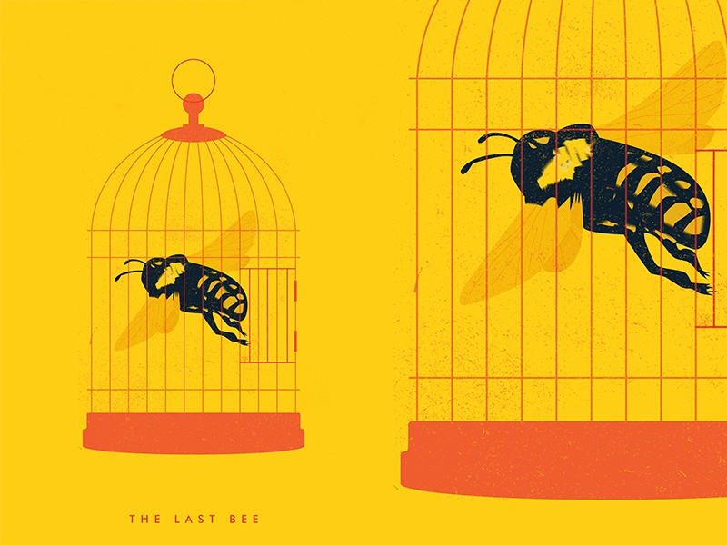 The Last Bee editorial illustration grudge cage bee fragment poster art poster challenge poster a day lines form poster illustration laconic composition abstract minimal
