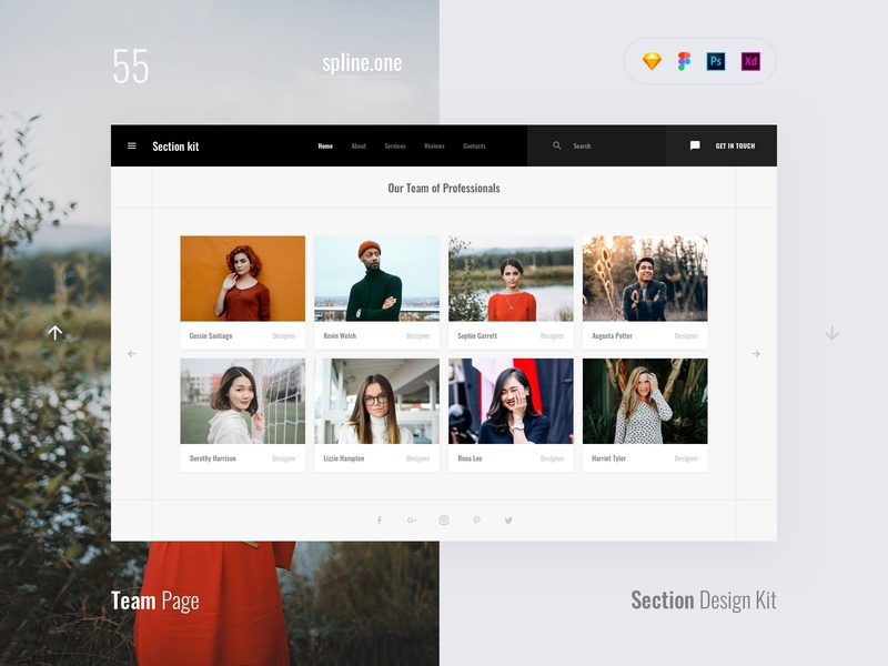 55 Team, Section Kit by Live Spline one on Dribbble