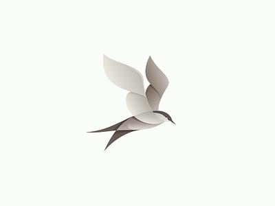 Gull logo bird gull