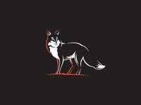 Fox  line engraving stroke illustration fox