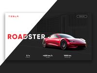 Tesla Roadster landing page